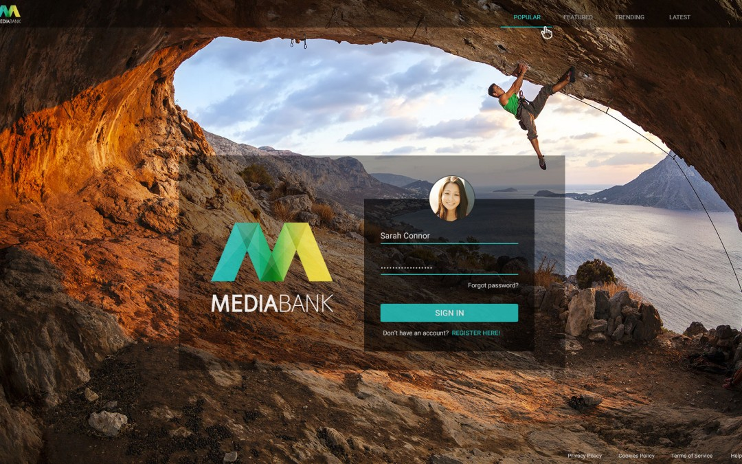 Want to discover more about MediaBank? The entrance is right here
